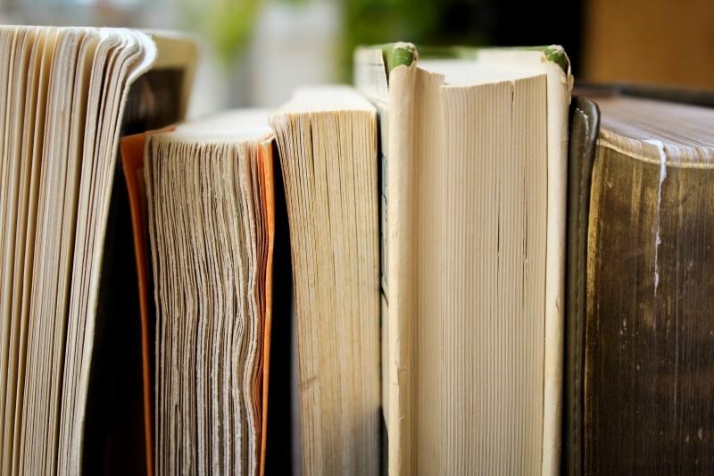 Dossier : livres sur les politiques