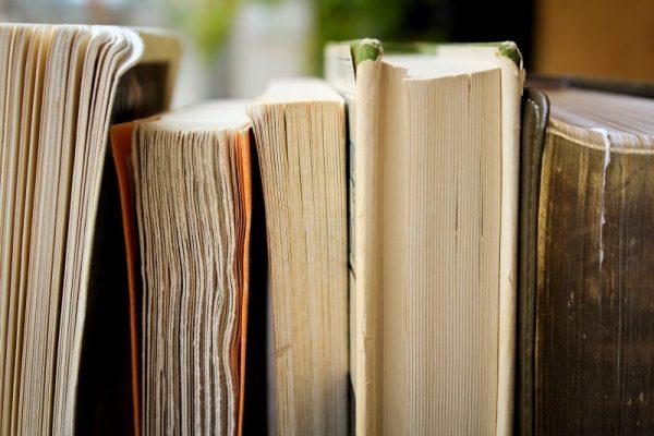 livres sur les politiques